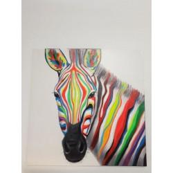 Quadre Zebra.
